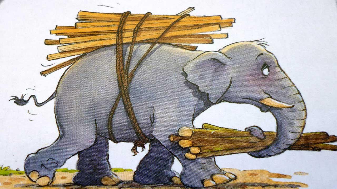 hod-slonom