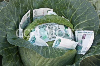 Деньги из капусты